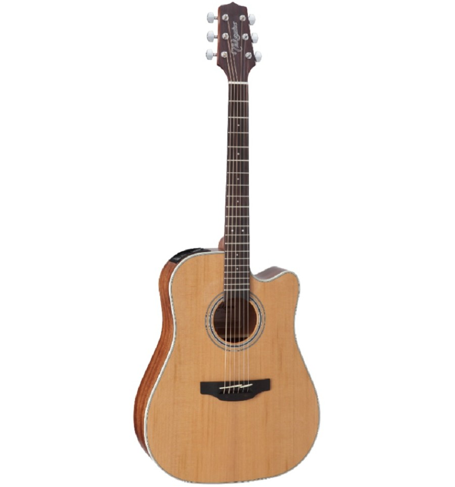 Takamine Gd20ce Acoustic Electric Guitar Natural Satin