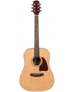 Martinez Beginner Acoustic Dreadnought Guitar Pack