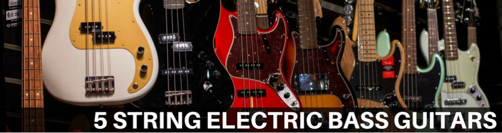 5 String Electric Bass Guitars
